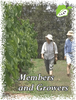 Members and Growers